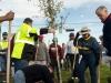 fcmd_treeplanting009