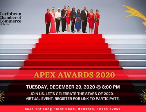 Caribbean Chamber of Commerce: Apex Award 2020